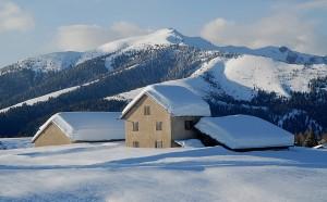 schnea2